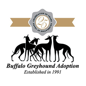 Buffalo Greyhound Adoption - Established in 1991