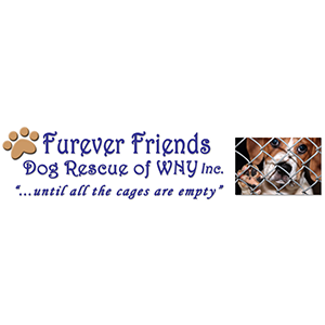 "Furever Friends - Dog Rescue of WNY Inc. ""...until all the cages are empty&qout;"
