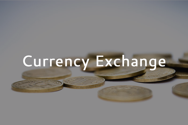 Currency Exchange_Website Ad