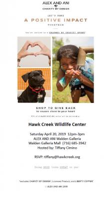 hawk creek charmed by charity